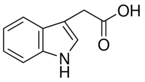 Indole-3-acetic acid, for Biochemistry